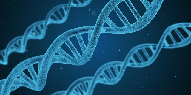 Genetic Testing Websites May Become New Social Networks