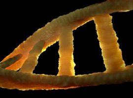 Scientists Claim it is Possible to Hack Computers Using Malicious DNA