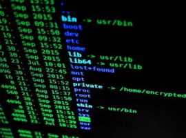 19-Year-Olds Arrested in Israel for Running Largest DDoS-For-Hire-Service