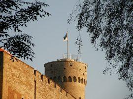 Estonia Temporarily Suspends Online ID Service for Fixing