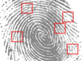 Russian Code Found in FBI Fingerprint Analysis Software