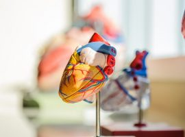AI May Hold Key to Identifying Deadly Heart Condition